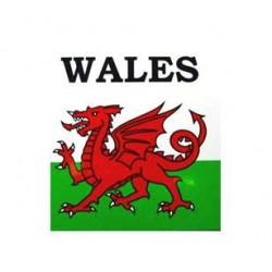 Medium Outside Wales Sticker