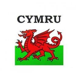 Medium Outside Cymru Sticker