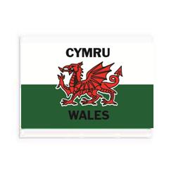 Welsh Flag Eraser