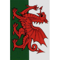Wales Flag Tea Towel