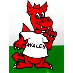 Comic Wales Dragon Sticker