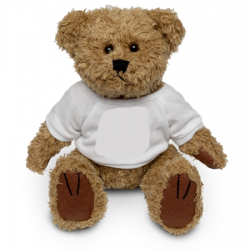 18cm Bear for Personalisation