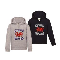 Baby's Wales Cymru Hoodie