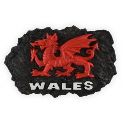 Wales Coal Magnet
