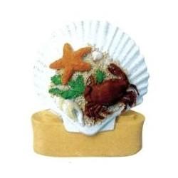 Personalised Beach Shell...