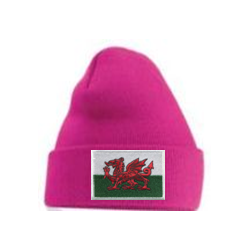 Welsh Flag Beanie Hat Hot Pink