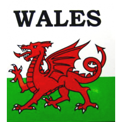 Large Outside Wales Sticker