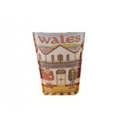 Wales Comic Shot Glass